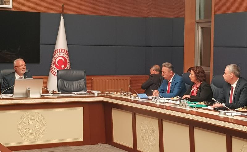 CHP'li Bayır: Siyasi partilerin bir arka bahçesi olamazlar