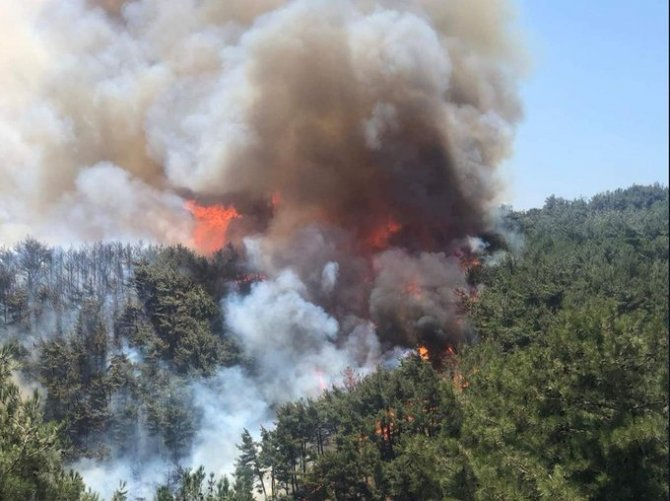 İzmir'deki orman yangını söndürülemedi
